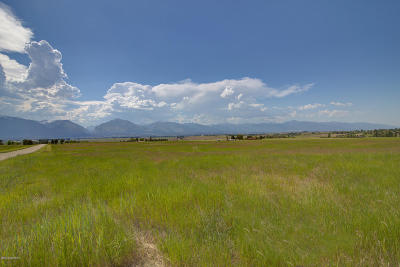 Ravalli County Residential Lots & Land For Sale: Lot 7a Palfiena Trail
