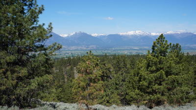 Ravalli County Residential Lots & Land For Sale: 1899-2097 Sapphire Ranch Trl