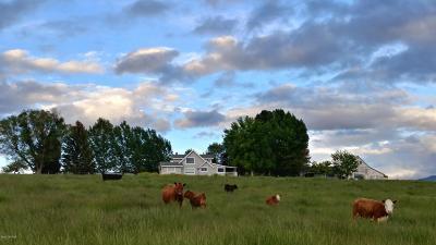 Corvallis Single Family Home For Sale: 599 & 605 Popham Ln