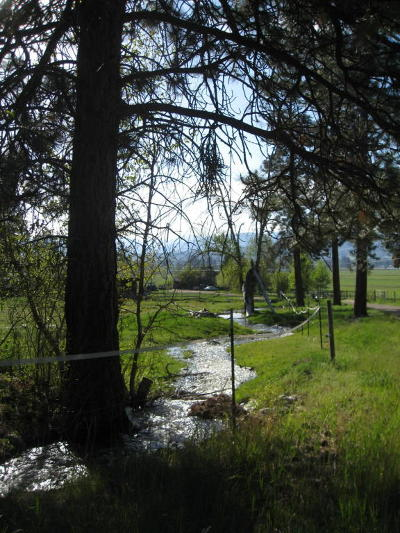 Ravalli County Residential Lots & Land For Sale: Unk S Gold Creek Loop
