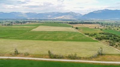 Ravalli County Residential Lots & Land For Sale: 2925 Home Acres Rd