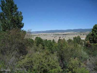 Ravalli County Residential Lots & Land For Sale: 1071 Prairie Ln