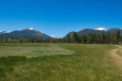 Ravalli County Residential Lots & Land For Sale: Nhn Curlew Orchard Rd