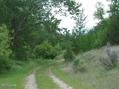Ravalli County Residential Lots & Land For Sale: Tract 6 Quiet Place