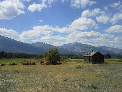 Ravalli County Residential Lots & Land For Sale: Nhn Us-93 S