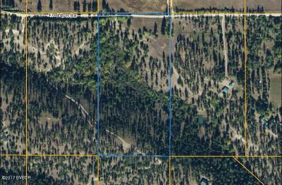 Ravalli County Residential Lots & Land For Sale: 1311 Megan Trl
