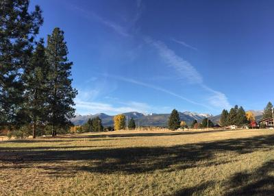 Ravalli County Residential Lots & Land For Sale: Nhn Pleasant View Drive