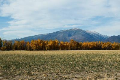 Ravalli County Residential Lots & Land For Sale: 535 Fish Hatchery Rd