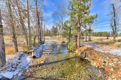 Ravalli County Residential Lots & Land For Sale: 538 Hillside Ranch Rd