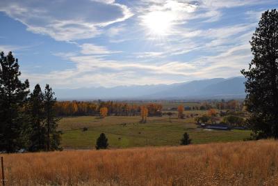 Stevensville Single Family Home For Sale: 624 Hilltop Dr