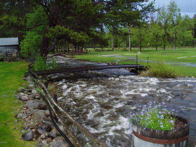 Ravalli County Single Family Home For Sale: 291 Lost Horse Rd
