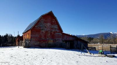Ravalli County Single Family Home For Sale: 187 Lost Horse Rd