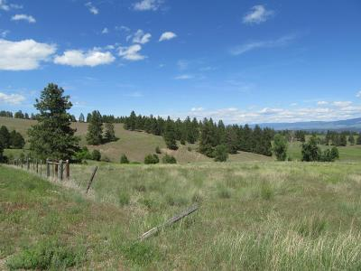 Ravalli County Residential Lots & Land For Sale: 512 Sweathouse Creek Rd