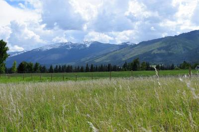 Ravalli County Residential Lots & Land For Sale: 443 Dutch Hill Rd