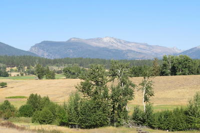 Ravalli County Residential Lots & Land For Sale: Nkn Bourne Ln