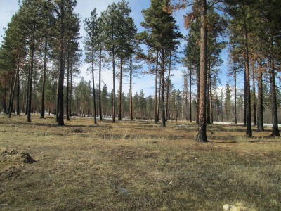 Ravalli County Residential Lots & Land For Sale: Nhn Two Horse Ln