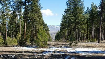 Ravalli County Residential Lots & Land For Sale: Nkn Two Horse Ln
