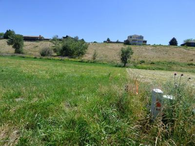 Ravalli County Residential Lots & Land For Sale: 274 Snow Goose Ct