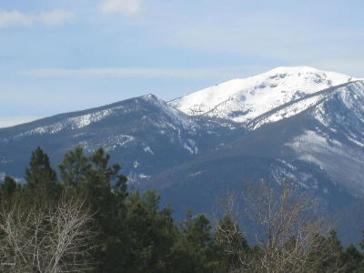 Ravalli County Residential Lots & Land For Sale: Unk Cameron Rose