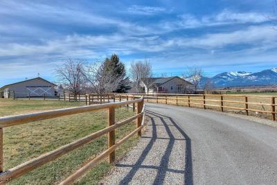 Stevensville Single Family Home For Sale: 2431 Home Acres Rd