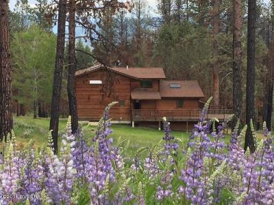 Ravalli County Single Family Home For Sale: 1006 Judd Creek Holw