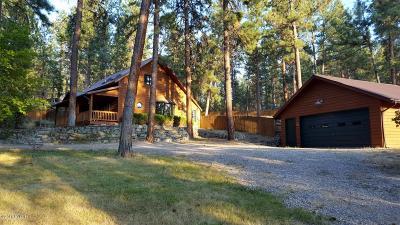 Single Family Home For Sale: 206 Sleepy Hollow Trl