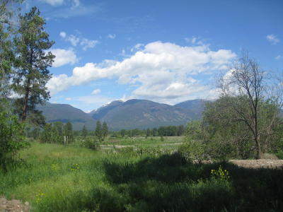 Ravalli County Residential Lots & Land For Sale: Unk Hwy 203