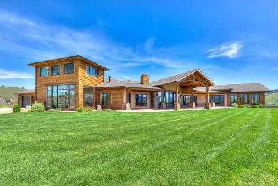 Ravalli County Single Family Home For Sale: 555 Skyfire Dr