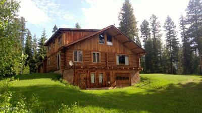 Single Family Home For Sale: 653 Pine Ridge Rd