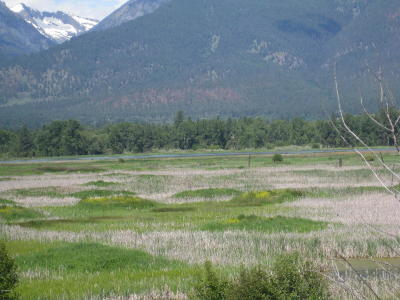 Ravalli County Residential Lots & Land For Sale: Unk Metcalf Vista Rd