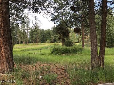 Ravalli County Residential Lots & Land For Sale: 126 Pistol Ln
