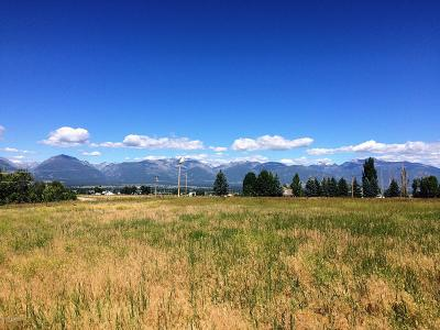 Ravalli County Residential Lots & Land For Sale: 1600 Mountain View Orchard Rd
