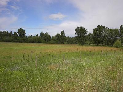 Ravalli County Residential Lots & Land For Sale: 196 Pine Dr