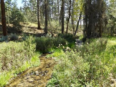 Ravalli County Residential Lots & Land For Sale: 001 Higgins Rd