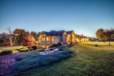 Stevensville Single Family Home For Sale: 3707 Eastside Hwy