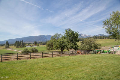 Darby, Sula Single Family Home For Sale: Nhn Running Elk Rd