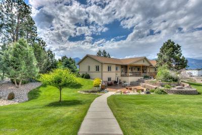 Stevensville Single Family Home For Sale: 365 Aspen Wood Dr