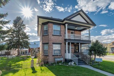 Stevensville Single Family Home For Sale: 501 Main St