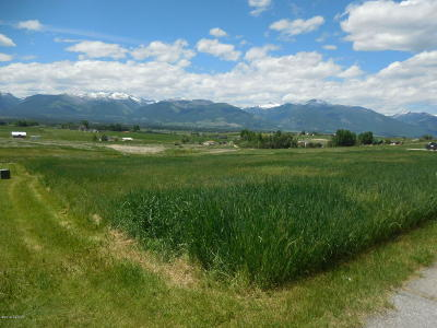 Ravalli County Residential Lots & Land For Sale: 2077 Desperado Trl