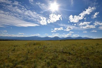 Ravalli County Residential Lots & Land For Sale: 1000 Willy Way