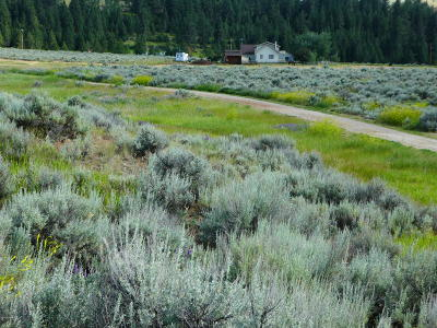 Ravalli County Residential Lots & Land For Sale: Nhn Park Lane