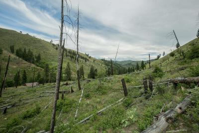 Ravalli County Residential Lots & Land For Sale: Nhn North Fork Rye Creek Rd