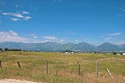 Ravalli County Residential Lots & Land For Sale: Lot 2 Mountain View Orchard