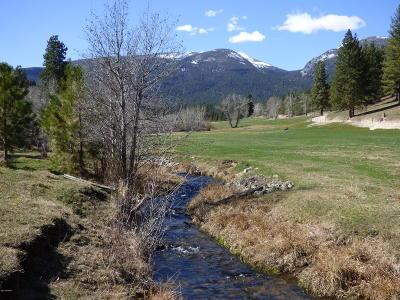 Ravalli County Residential Lots & Land For Sale: 622 Camas Creek Loop