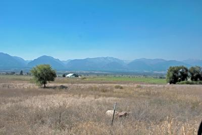 Ravalli County Residential Lots & Land For Sale: 1745 Mountain View Orchard Rd