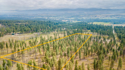 Ravalli County Residential Lots & Land For Sale: 459 Two Horse Ln