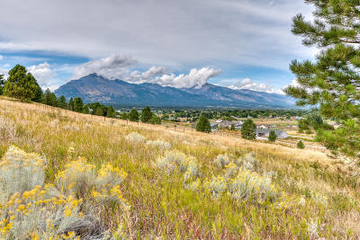 Ravalli County Residential Lots & Land For Sale: 844 Cochise Way