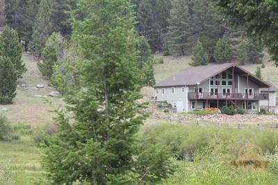 Divide Single Family Home For Sale: 3027 Divide Creek Road