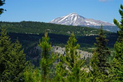 Big Sky MT Residential Lots & Land For Sale: $530,000