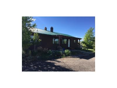 Dillon Single Family Home For Sale: 3900 Ten Mile